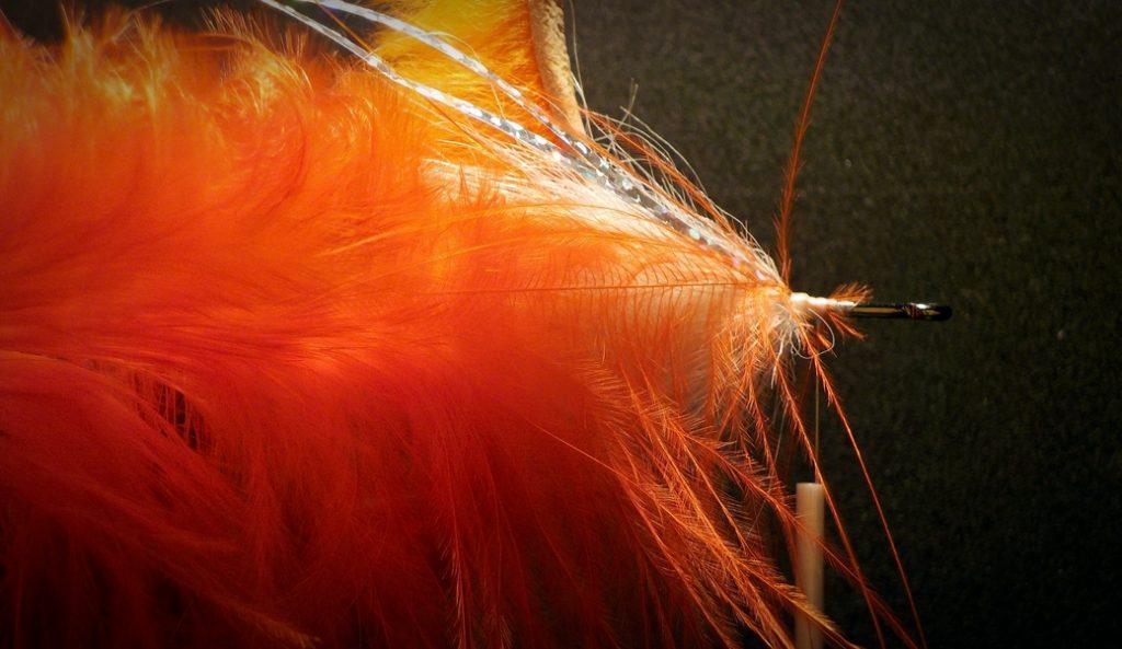 narancs-zonker-047