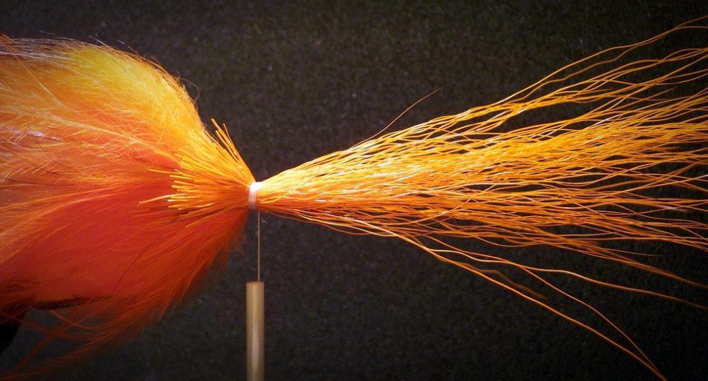 narancs-zonker-065